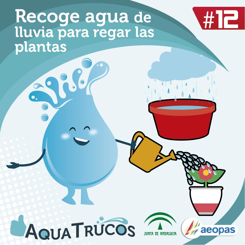 aquatrucos-12